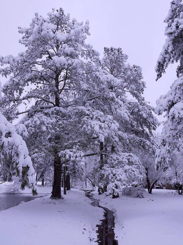 Winter Print featuring the photograph Winter Wonderland 3 by Mike McGlothlen