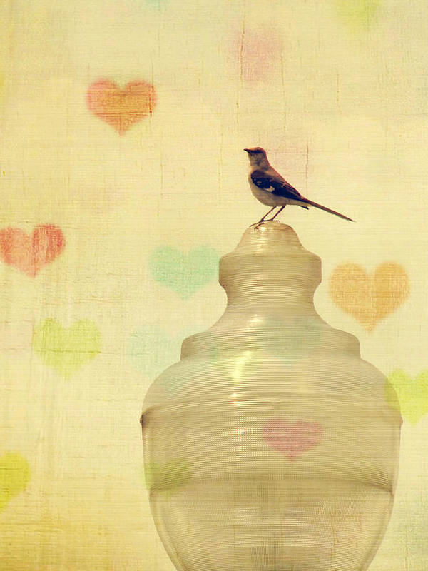 Bird Print featuring the photograph Heartsong by Amy Tyler