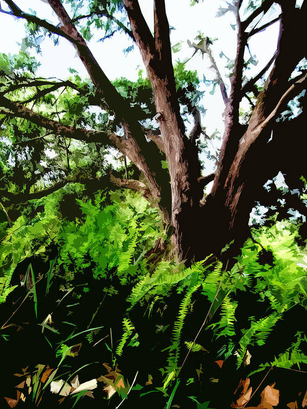 Nature Art Print featuring the digital art Untitled by Russell Clenney