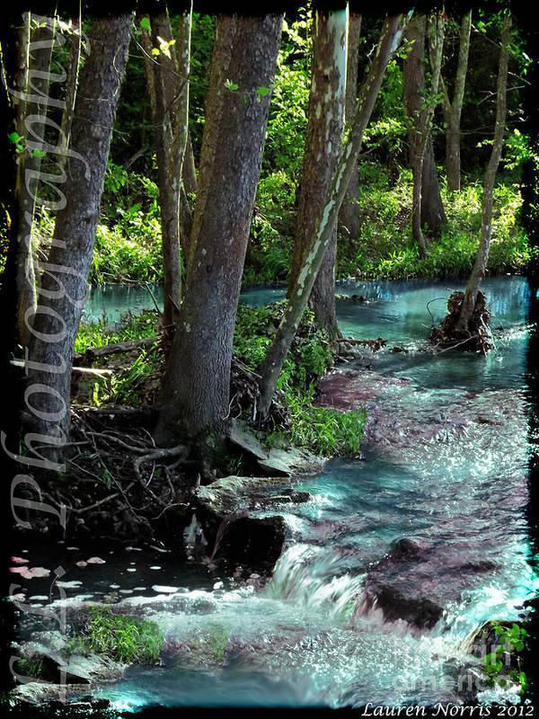 Landscape Art Print featuring the digital art Beauty In The Sticks by Lauren Norris