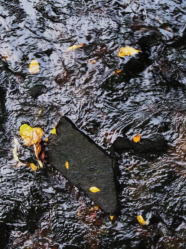 Black Rock Yellow Leaves Water Art Print featuring the photograph Black Rock At Graue Mill by Todd Sherlock