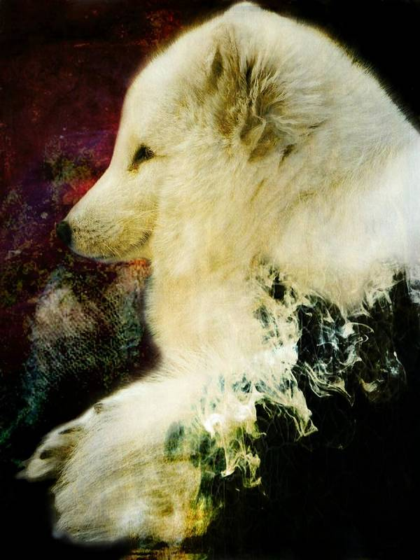 Texture Art Print featuring the photograph Enlightenment by Leah Moore