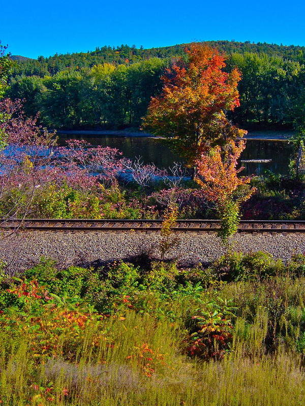 Landscape Art Print featuring the photograph Fall By The River 5 by George Ramos