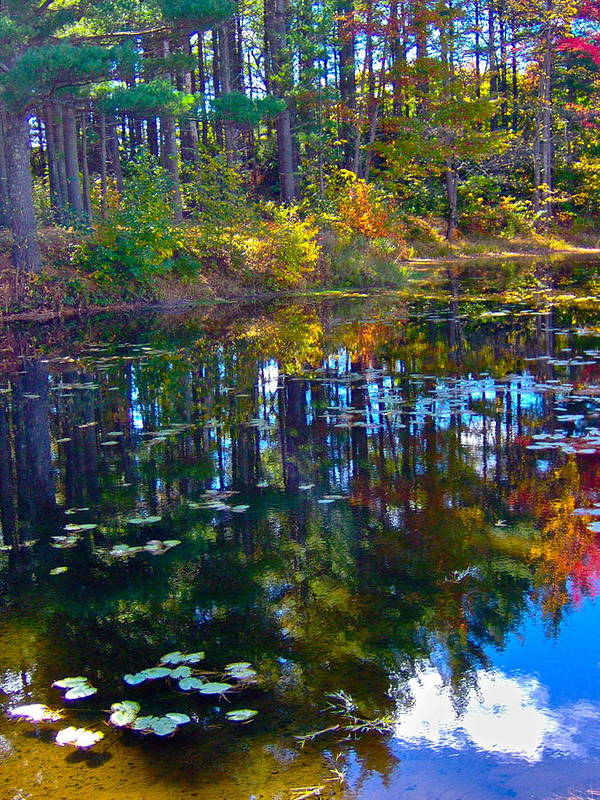 Landscape Art Print featuring the photograph Fall Reflection 2 by George Ramos