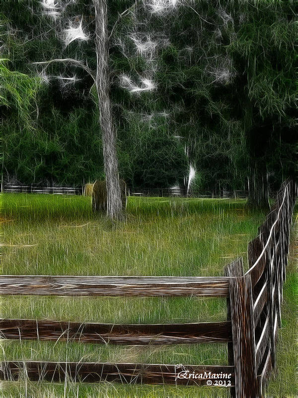 Fence Art Print featuring the photograph Fenced In Field by Ericamaxine Price