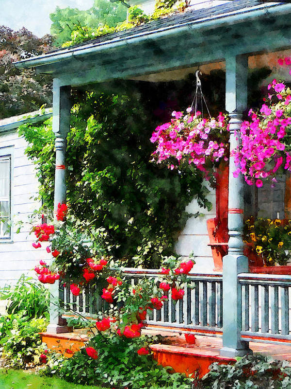 Hanging Baskets Art Print featuring the photograph Hanging Baskets And Climbing Roses by Susan Savad