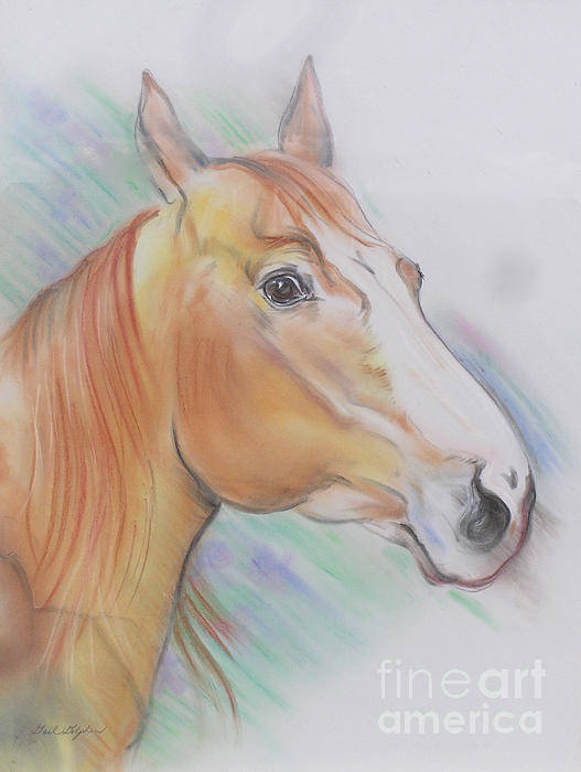 Horse Art Print featuring the pastel Horse Spooked by Gail Dolphin