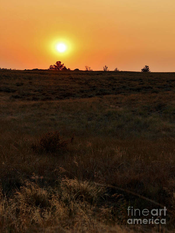 Wyoming Art Print featuring the photograph In The Eye Of The Sun by Wesley Hahn
