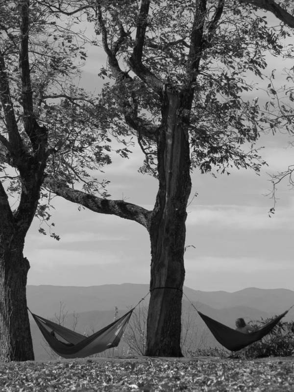 Black And White Photograph Art Print featuring the photograph Lazy Days by Ginger Adams