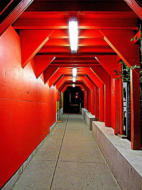 Tunnel Art Print featuring the photograph Night Tunnel by Randall Weidner