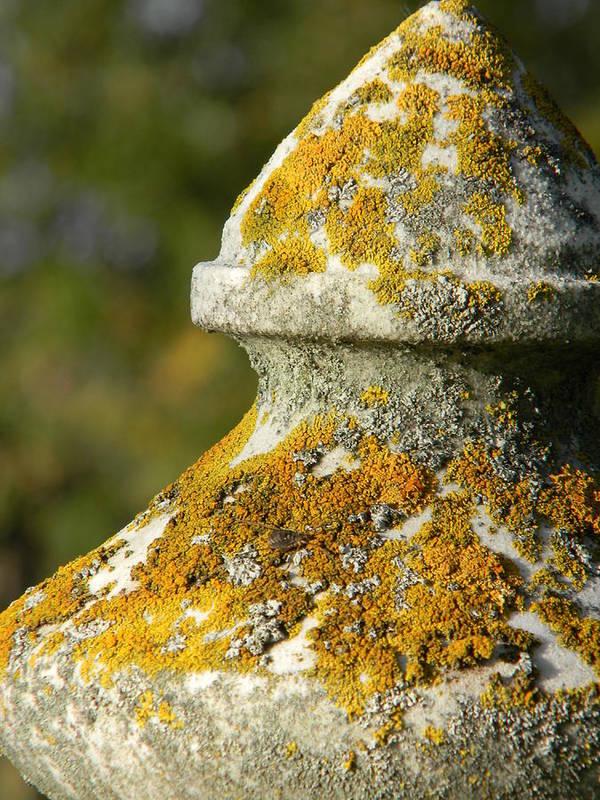 Landscape Art Print featuring the photograph Obelisk by Brandy Fenenga