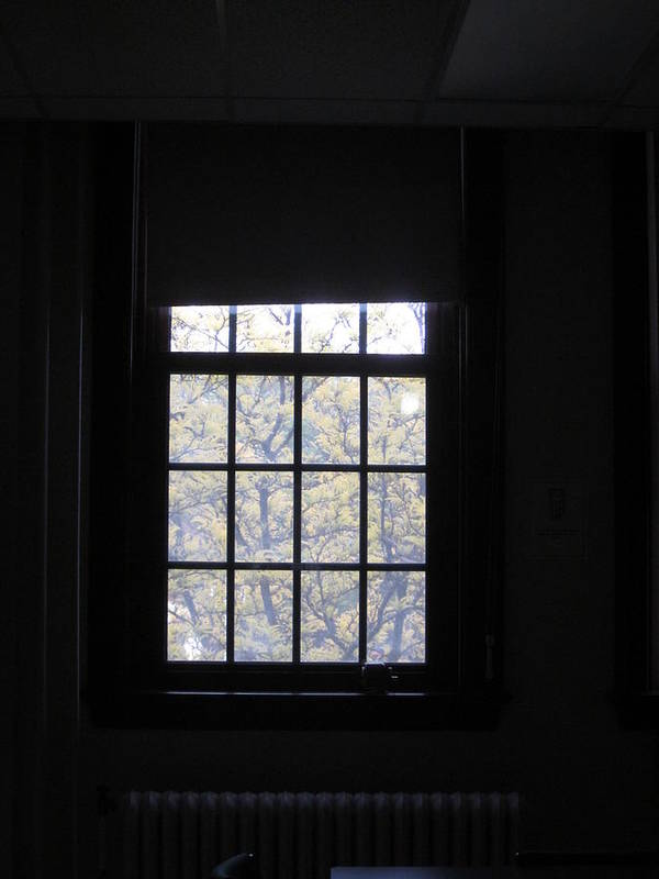 Window Art Print featuring the photograph Outside World Peeks Into A Darkened Room by Guy Ricketts