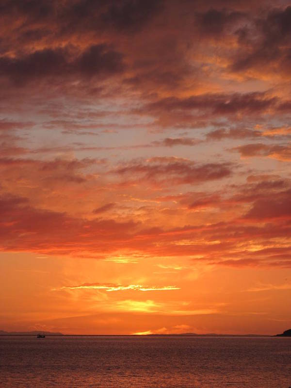 Sunset Art Print featuring the photograph Port Henderson Sunset 2 by Jennifer Watson