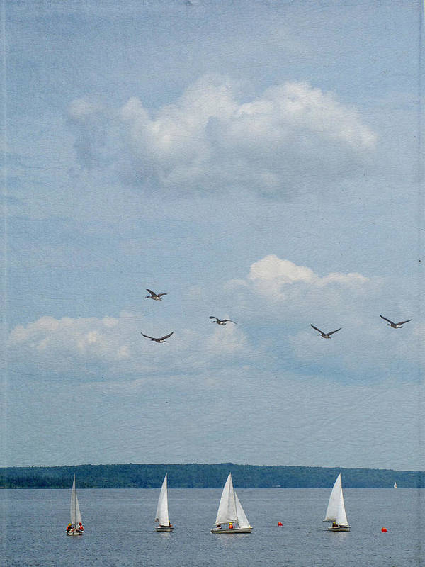 Vertical Art Print featuring the photograph Ssailboats On River by Francois Dion