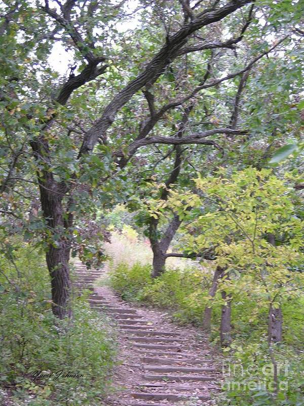 Steps Art Print featuring the photograph Steps Trail by Yumi Johnson