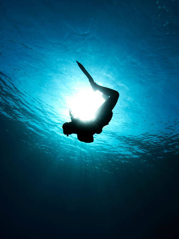 Underwater Art Print featuring the photograph Sun Diver by Rico Besserdich