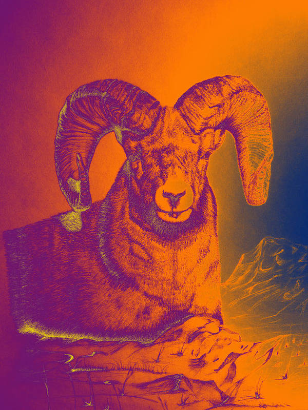 Big Horn Sheep Art Print featuring the digital art Sunrise Ram by Mayhem Mediums