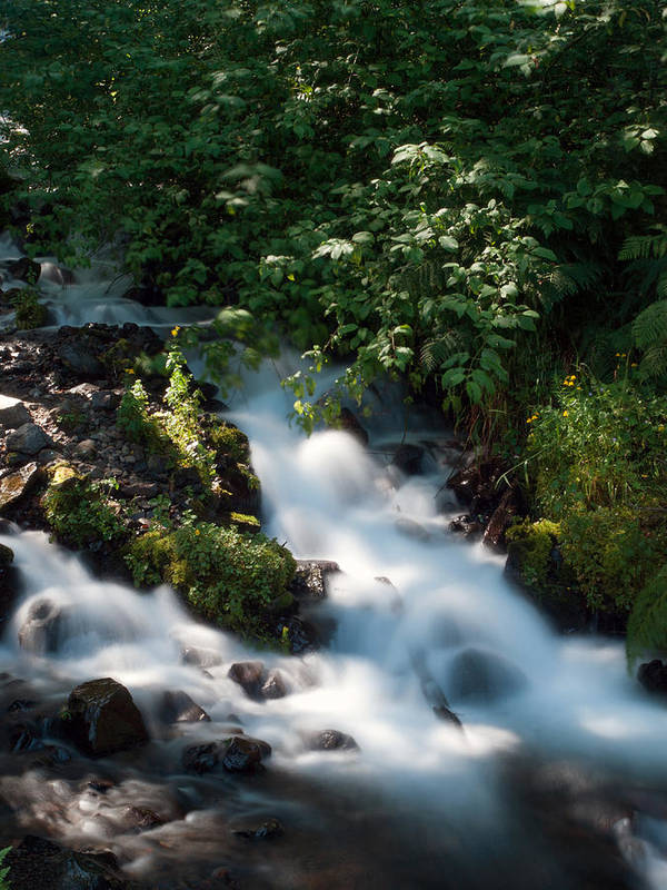 Water Art Print featuring the photograph Wahkeena Falls by Daniel Tubbs