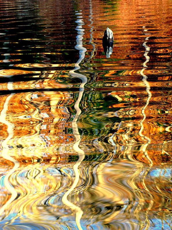 Art Print featuring the photograph Water Glass by Eyefool Photos Brett Klersfeld