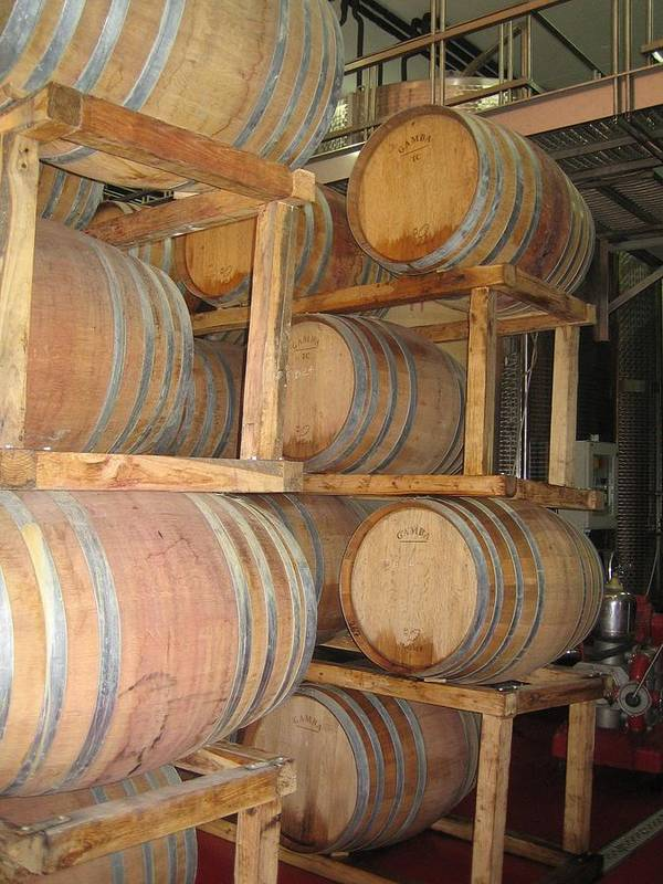 Wine Art Print featuring the photograph Wine Casks by Angela Rose