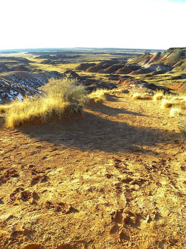 Photograph On Paper Art Print featuring the glass art Painted Desert 2 by Patricia Bigelow