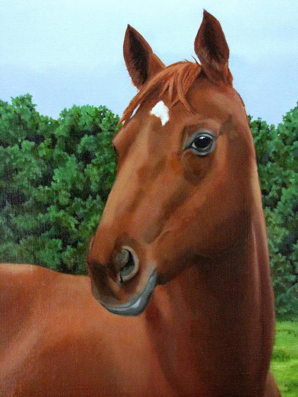 Horse Art Print featuring the painting Retired Racer by Sandra Chase