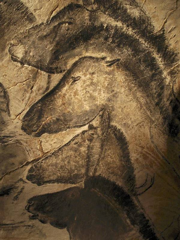Animal Art Print featuring the photograph Stone-age Cave Paintings, Chauvet, France by Javier Truebamsf
