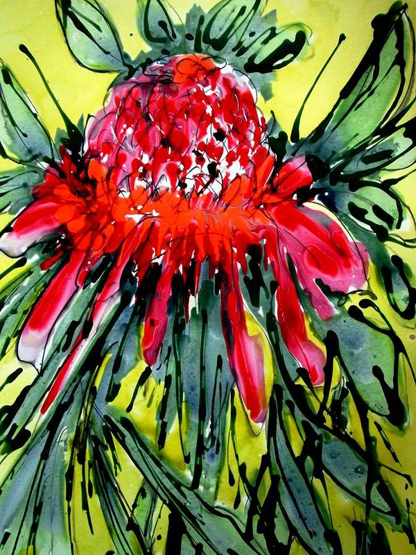 Nature Art Print featuring the photograph Heavenly Flowers by Baljit Chadha