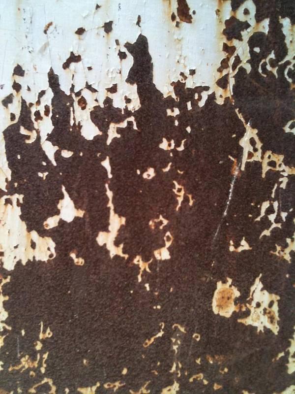 Fania Simon Art Print featuring the photograph Goree Texture by Fania Simon