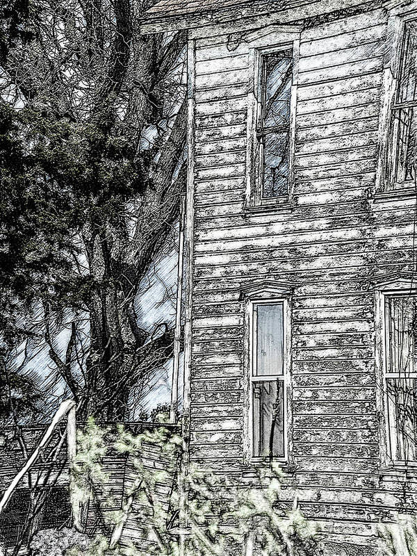 Haunted Houses Art Print featuring the photograph A Tree In The Backyard by Tom Hageman