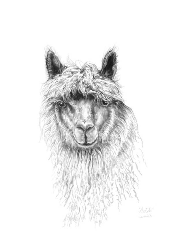 Llama Art Art Print featuring the drawing Addi by K Llamas