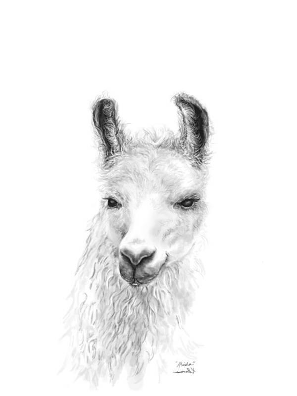 Llama Art Art Print featuring the drawing Alisha by K Llamas