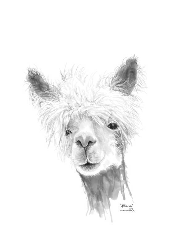 Llama Art Art Print featuring the drawing Allison by K Llamas