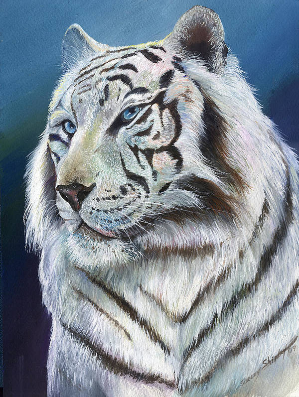 Big Cat Art Print featuring the painting Angel The White Tiger by Sherry Shipley