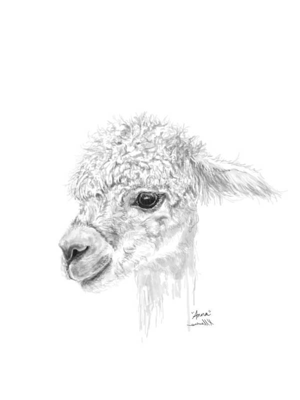 Llama Art Art Print featuring the drawing Anna by K Llamas