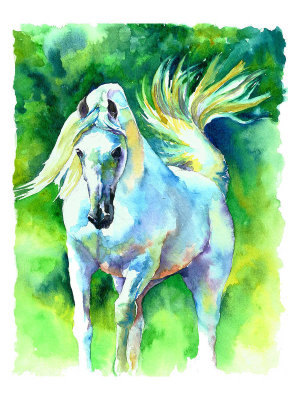 Arabian Horse Art Print featuring the painting Arabian Stallion by Christy Freeman