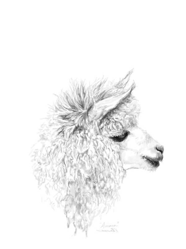 Llama Art Art Print featuring the drawing Ariana by K Llamas