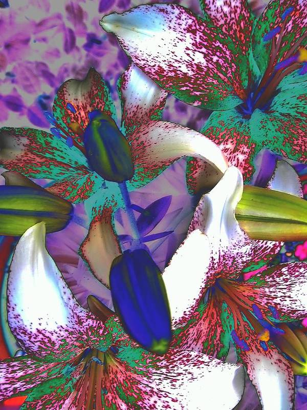 Asiatic Lilies Abstraction Art Print featuring the photograph Asiatic Lilies Abstraction by Beth Akerman