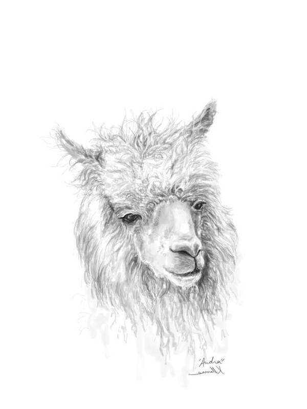 Llama Art Art Print featuring the drawing Audra by K Llamas
