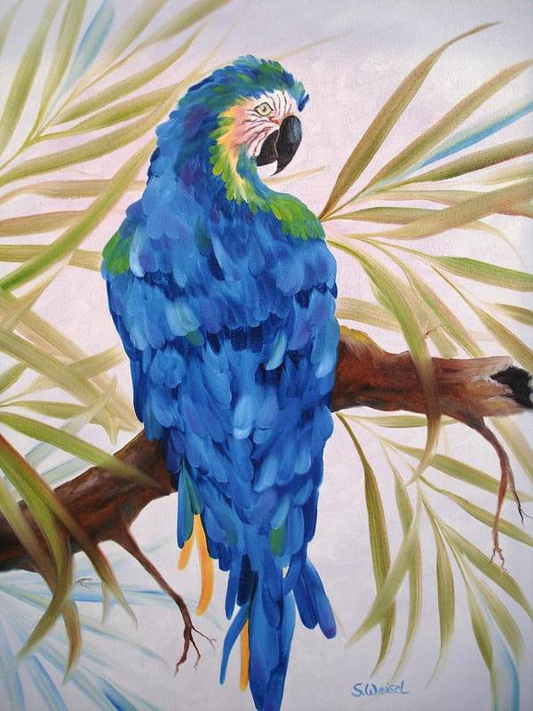 Wild Animal Exotic Bird Blue Macaw Tropical Art Print featuring the painting Blue Macaw by Sherry Winkler
