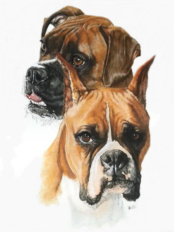 Pet Art Print featuring the painting Boxers by Barbara Keith