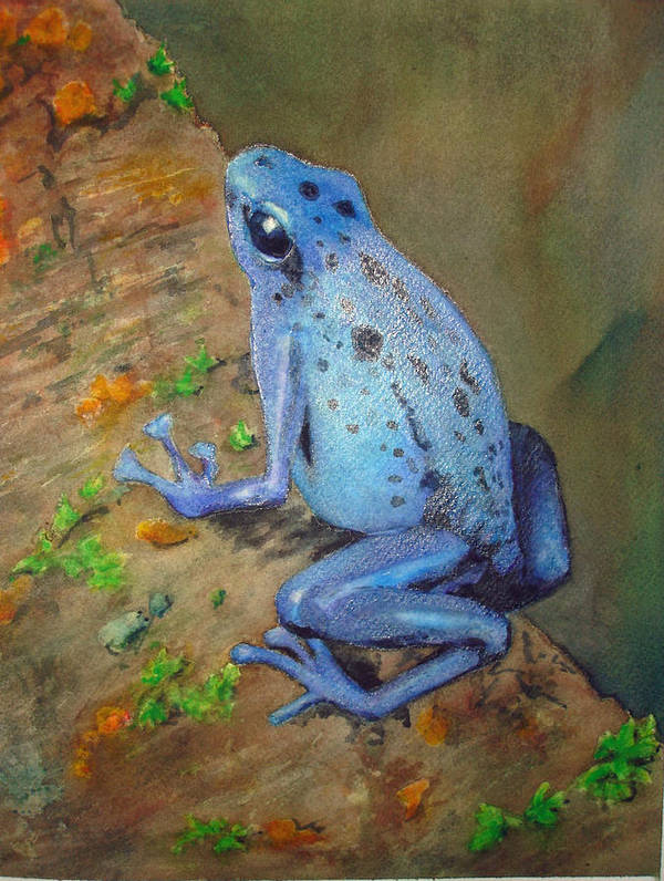 Animal Art Print featuring the painting Brilliant Blue Poison Dart Frog by Kerra Lindsey