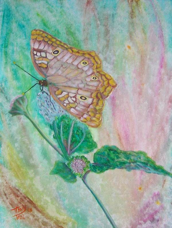Butterfly Art Print featuring the painting Butterfly by Tony Rodriguez