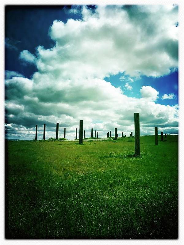 Byxpee Park Art Print featuring the photograph Byxbee Pole Field by Anne Thurston