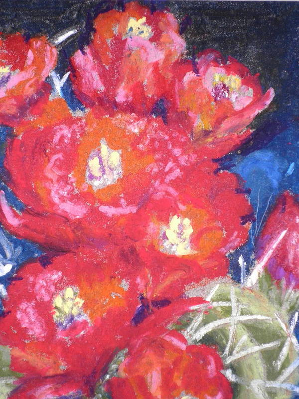 Cactus Paintings Art Print featuring the pastel Cactus Blooms by Curt Peifley
