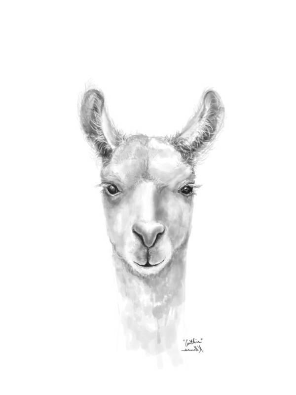 Llama Art Art Print featuring the drawing Caitlin by K Llamas
