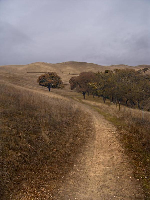 Landscape Art Print featuring the photograph California Winter by Karen W Meyer