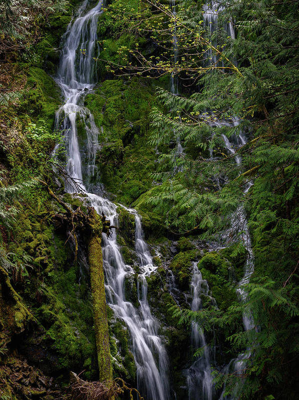 Waterfall Art Print featuring the photograph Cascade Falls by Keith Boone
