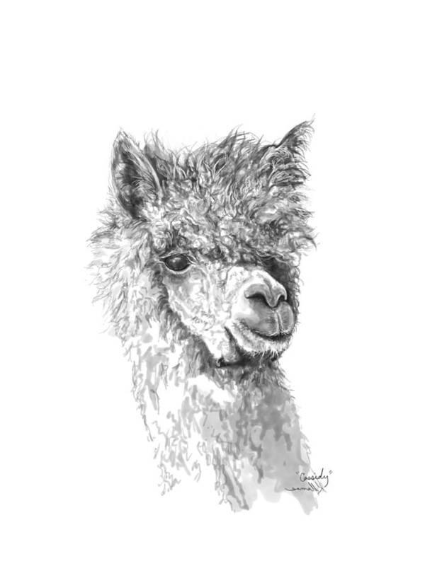 Llama Art Art Print featuring the drawing Cassidy by K Llamas
