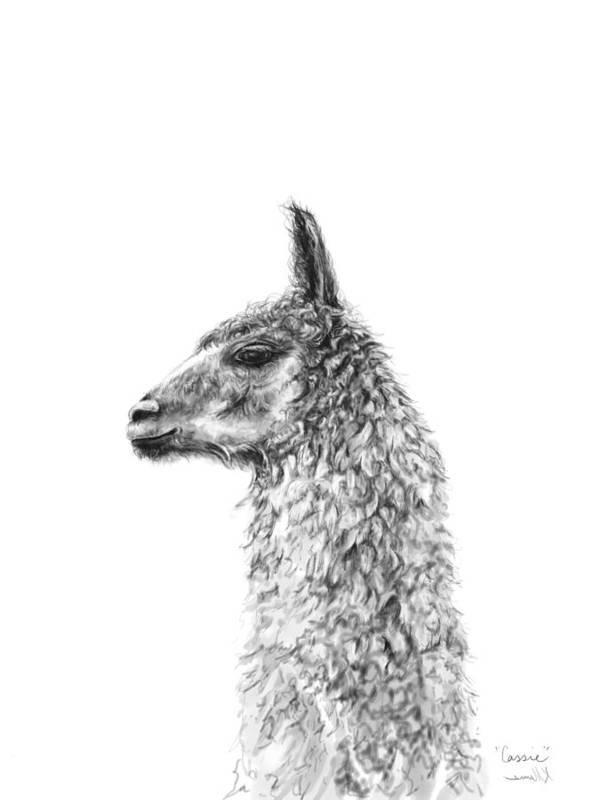 Llama Art Art Print featuring the drawing Cassie by K Llamas